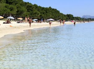 transfers from palma airport to alcudia
